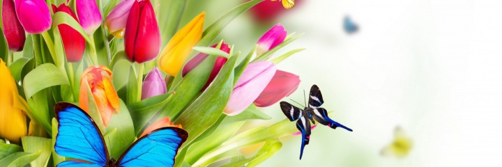 Бронирование в майские праздники